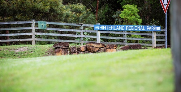 Gold Coast Regional Hinterland Park (4km Cross Country)
