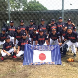 Japan Indigo - Baseball